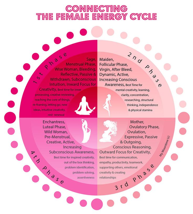 female menstrual cycle